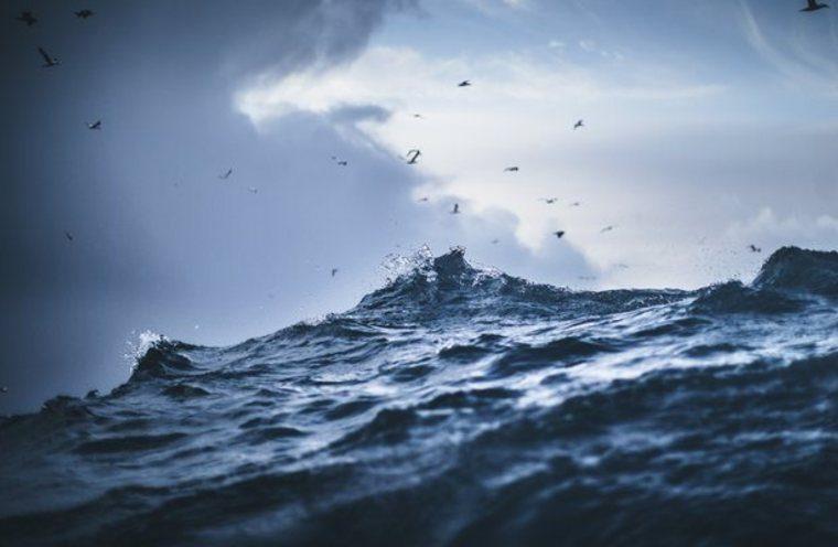 Havet forandrer seg og vi er i en risikosone. (Foto: Paolo Cipriani/HI)